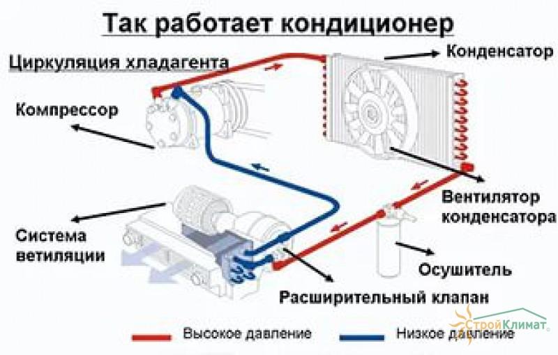 при включении кондиционера появляется шум пежо Термобелье мужское